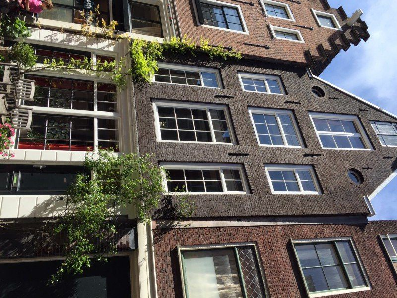 Finding space wherever possible to add greenery to their homes. Jordaan area Amsterdam.