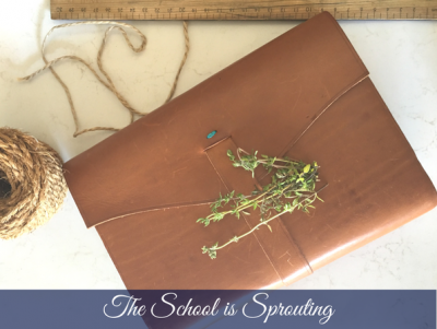 The school is sprouting – Carmen Darwin