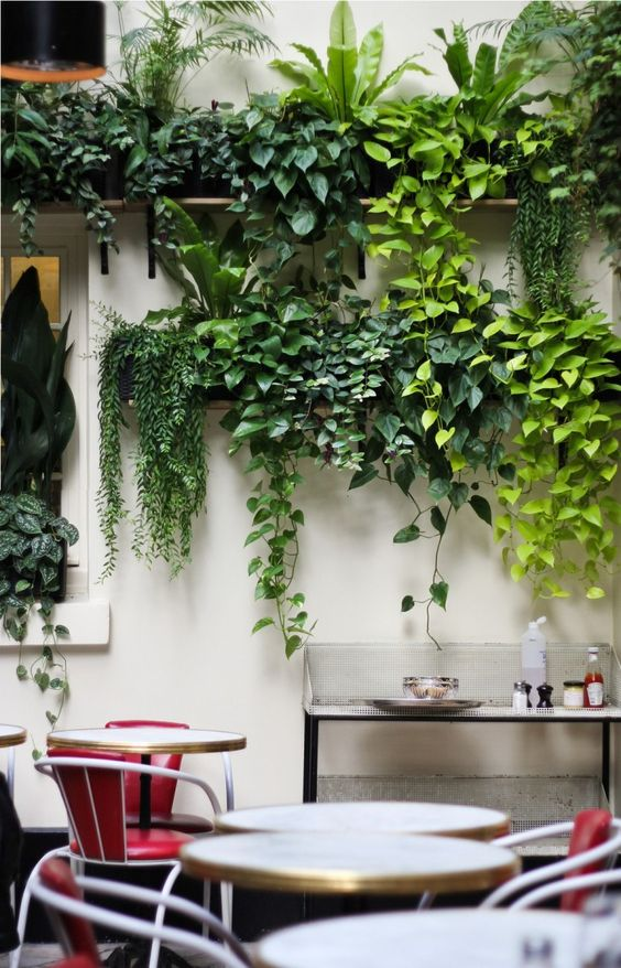 Vertical Garden Wall Hangings
