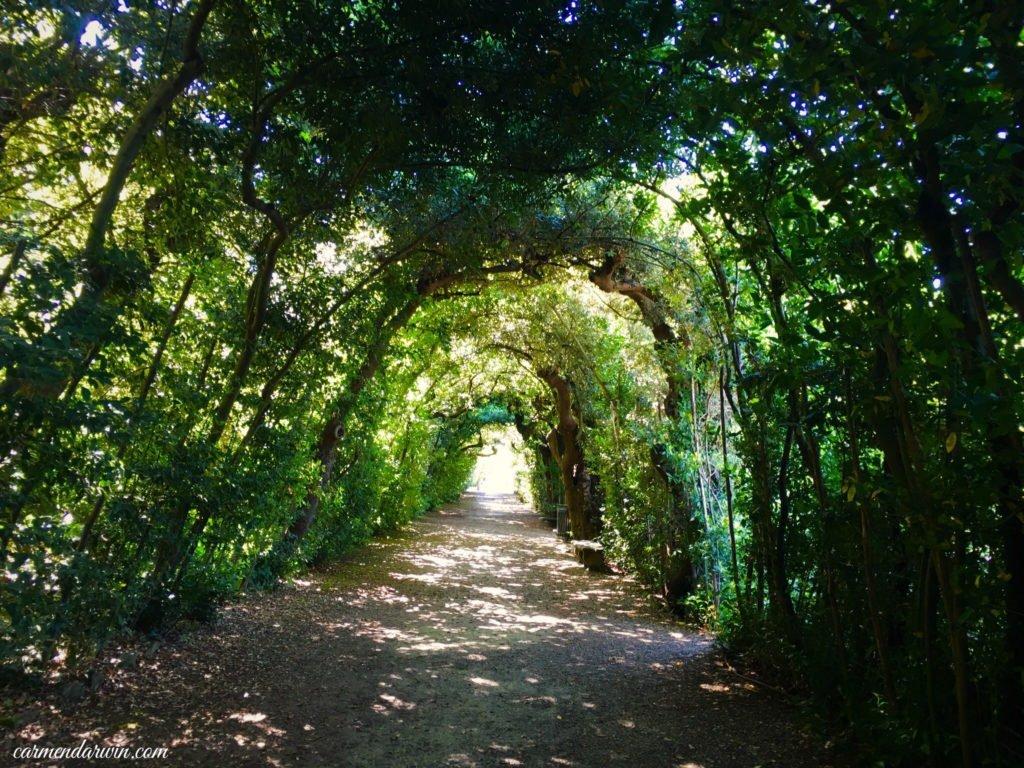 florence boboli gardens 4